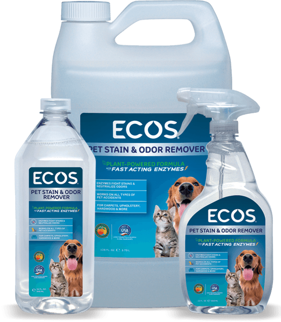 Pet Stain & Odor Remover - Image